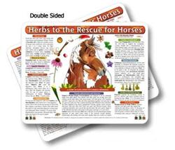 Horse - Equine Herbal Medicine Chart