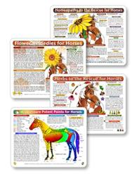 Horse - Equine Remedy Bundle Charts